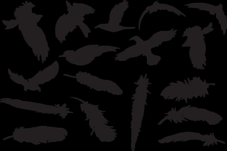 Piaproピアプロイラスト鳥と羽のシルエット